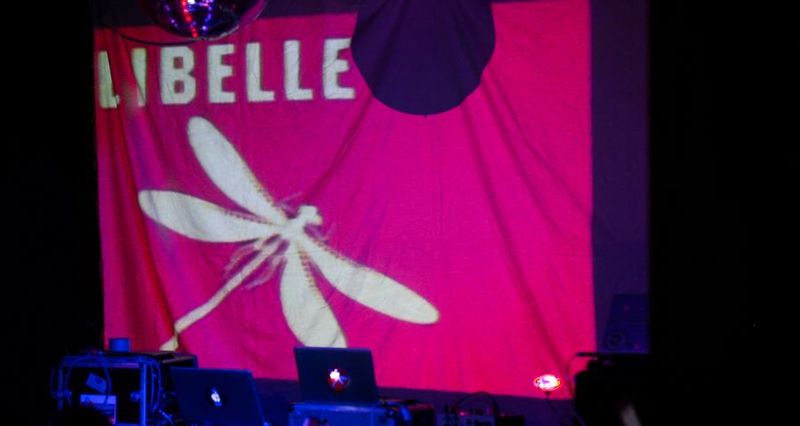 Libelle - Flugstunde III