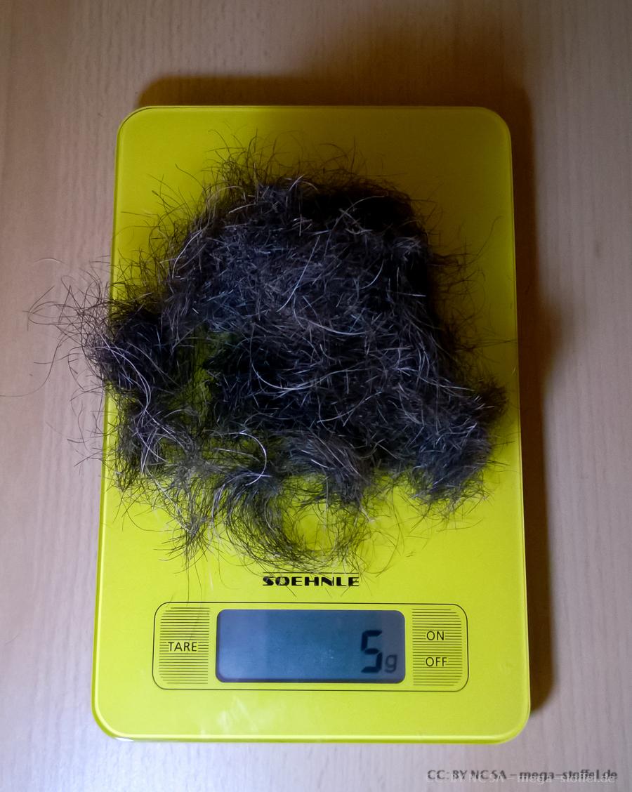 fünf Monate Bart wiegen etwa fünf Gramm