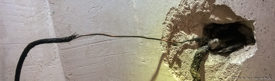 blanke Stromleitung /1
