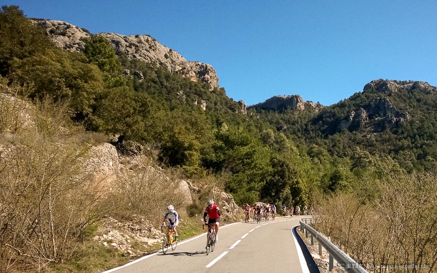 eine Gruppe Rennradfahrer bei Cambrils