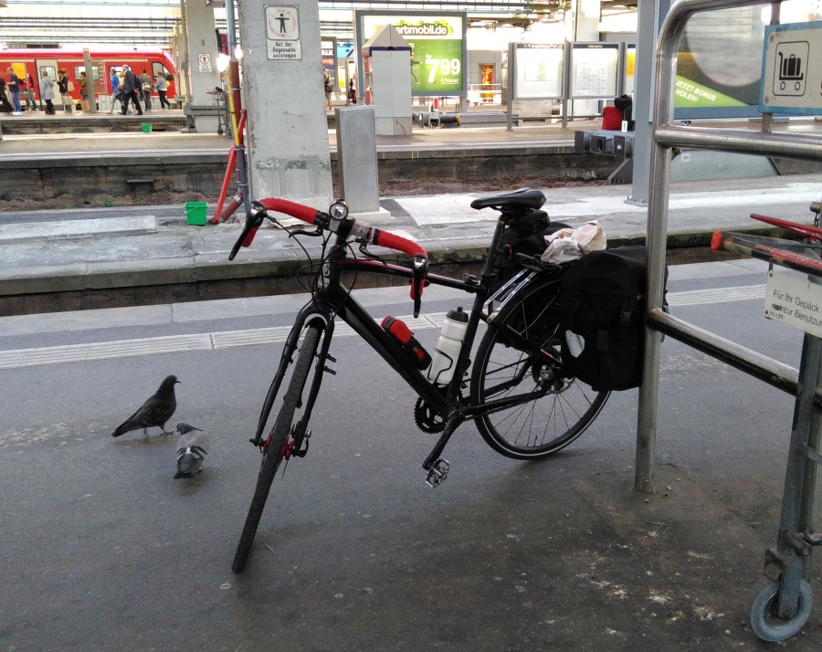 Abfahrt /1 - der Taubenkiller am Stuttgarter Bahnhof